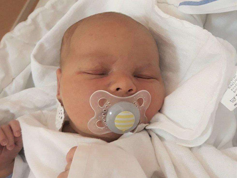 Tobiáš Urban, Rožnov pod Radhoštěm, narozen 29. listopadu 2020 ve Valašském Meziříčí, míra 52 cm, váha 4160 g