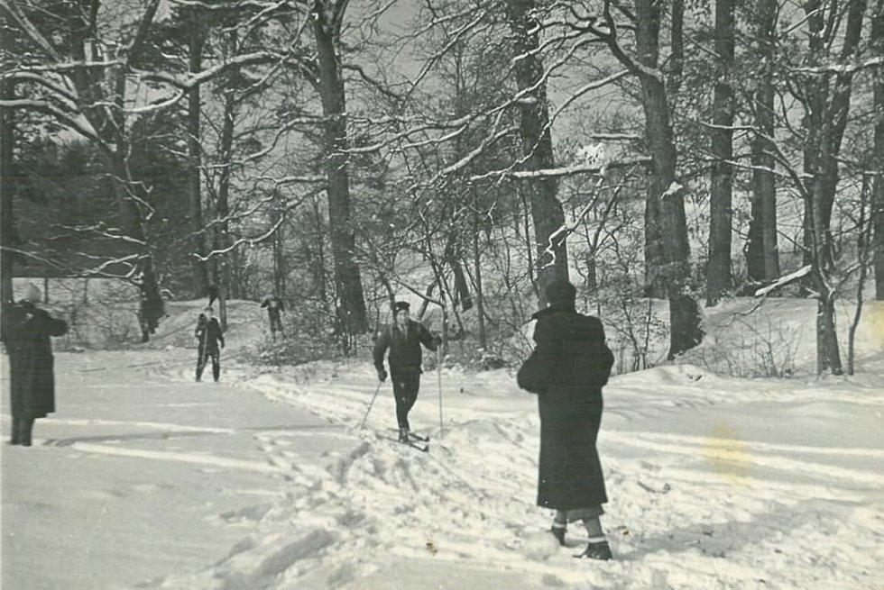 Lyžování v zámeckém parku ve Slavičíně.