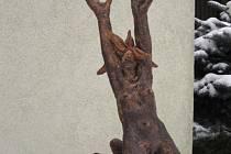 Veselá Pele sochaře Pavla Drdy, pálená hlína. Autor: Mehešová, 2013.