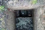 Archeologický průzkum v Kelči - Dno vrcholně středověkého příkopu, respektive jeho nejhlubší dosažený bod 3,90 m pod povrchem.