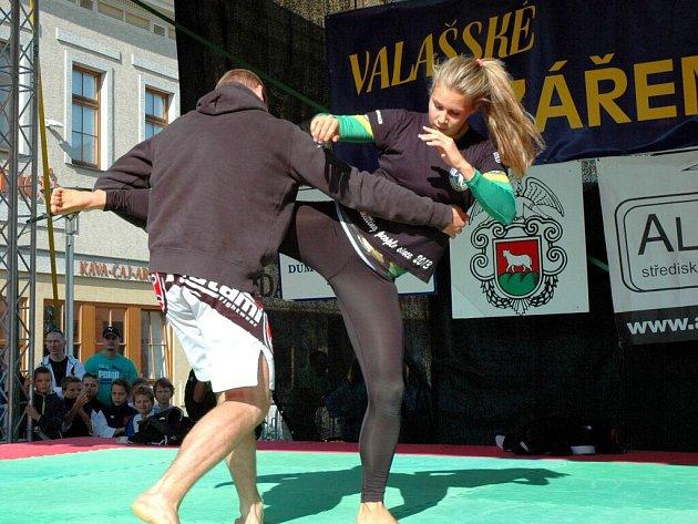 Festival Valašské záření ve Vsetíně