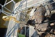 Socha svatého Valentina s nově instalovanou zlatou berlou na opravovaném mostě přes Rožnovskou Bečvu ve Valašském Meziříčí; čtvrtek 23. srpna 2018