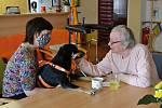 Fenka Arlenka potěšila svou návštěvou klienty Domova Jabloňová ve Vsetíně.
