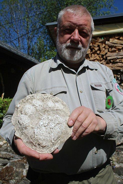 Jaromír Navrátil je dobrovolným strážcem CHKO Beskydy. Pulčínské skály mu učarovaly už v dětství. Je i okolí chrání už přes čtyřicet let. Začátkem května 2020 našel v rezervaci stopu medvěda.