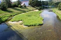 Namísto vody se v korytě Bečvy zelená rozlehlý ostrov.