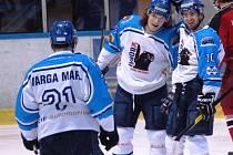 Hokejisté Meziříčí měli v sobotu důvod k radosti. Doma po dobrém výkonu porazili Opavu.