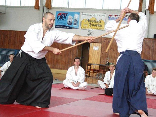 Aikido. Ilustrační foto.