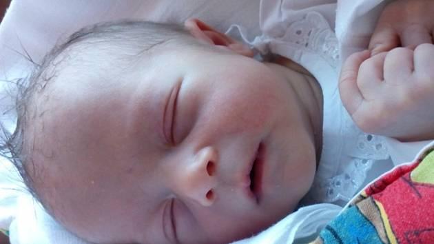 Ella Pastorcaková, 29. 6. 2016 v  porodnici Valašské Meziříčí, 2700 g, 48cm, Zubři.