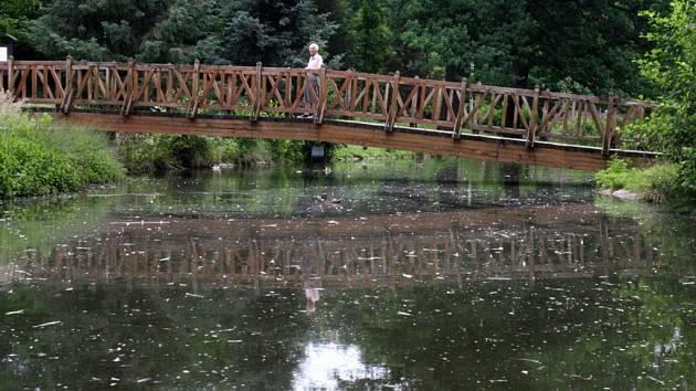 """Z rybníčku je podle radních """"bažinec"""", chtějí ho nechat vyčistit a opravit."""