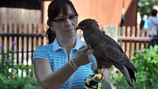 Program Myslivosti zdar! v Dřevěném městečku Valašského muzea v přírodě v Rožnově pod Radhoštěm; sobota 29. srpna 2015