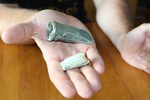 Archeolog Muzea regionu Valašsko Samuel Španihel ukazuje nový unikátní archeologický nález z Horní Lidče. Jedná se o bronzovou sekyrku z pozdní doby bronzové. Nález je unikátní především z toho důvodu, že se v sekyrce zachoval kousek dřevěného topůrka.