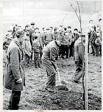 LÍPA SVOBODY. Zasazení lípy svobody v roce 1968.