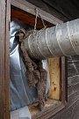 Odborníci ničí dřevokazný hmyz v Karlovském muzeu horkým vzduchem.  Izolace zabraňuje úniku tepla.