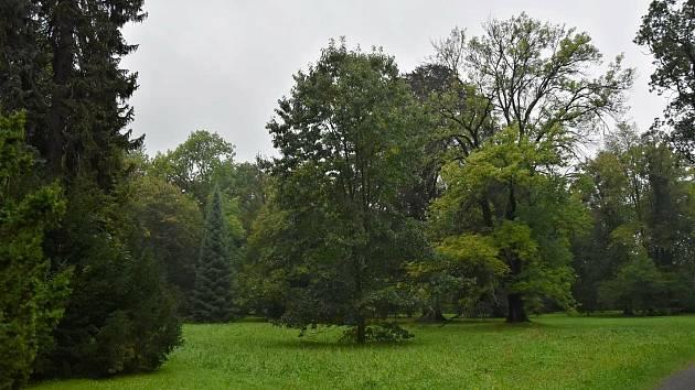 Památkově chráněný park u zámku Kinských ve Valašském Meziříčí.