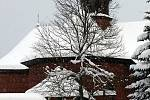 Zasněžené Velké Karlovice v lednu 2020.