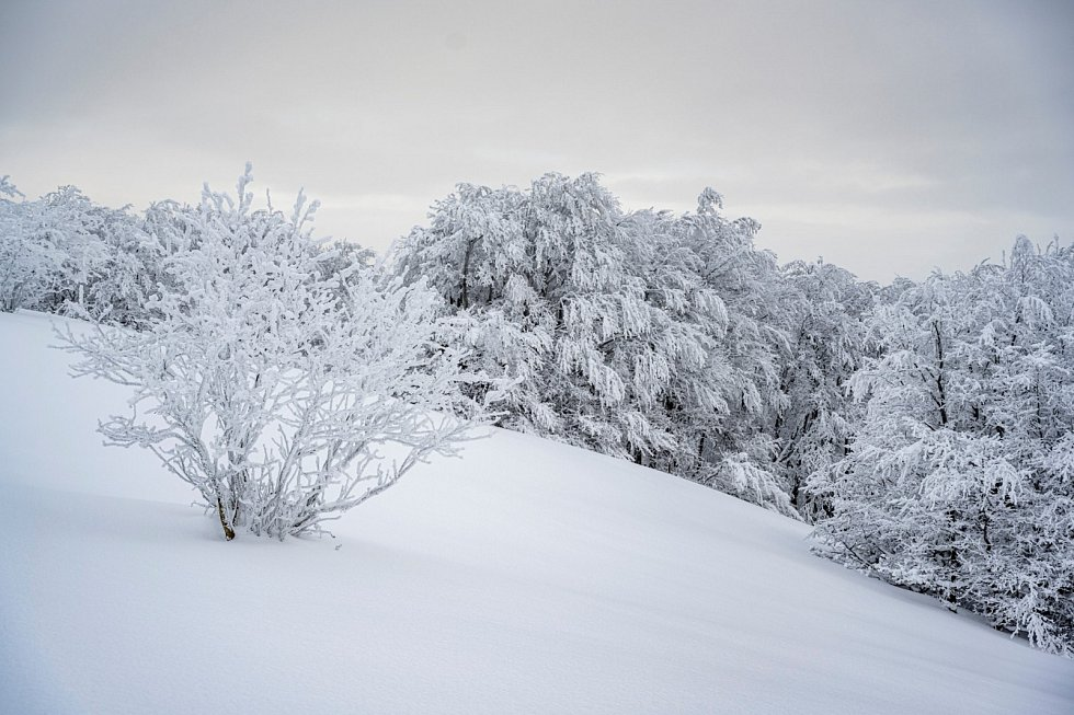 Výlet do zasněžených Pusteven byl jako z pohádky.