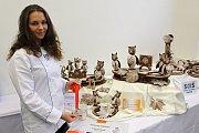Studentky SOŠ Josefa Sousedíka získaly stříbro a bronz na světovém poháru kuchařů a cukrářů v Lucembursku. Eliška Filgasová si za Soví školu přivezla stříbrnou medaili.