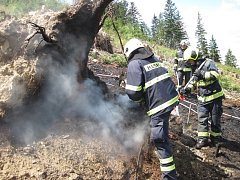 Nedbalost při používání otevřeného ohně stojí za požárem lesa ve Vidči