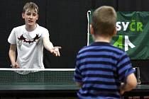 Ve Vsetíně se uskutečnil přebor v ping-pongu pod záštitou TJ Sokol.