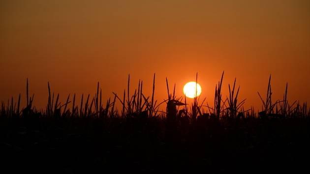 Východ slunce. Ilustrační foto