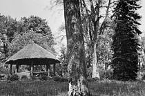 Zámecký altán v roce 1910 – naturalistický kruhový altánek byl postavený z kmenů stromů tvořících nosné sloupy a krytý byl doškovou střechou.