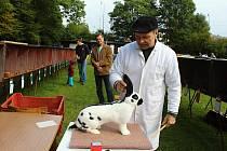 Téměř osmdesát chovatelů z okolí Vsetína, ze Zlínska, Rožnovska i ze Slovenska se přijelo o víkendu pochlubit se svými exempláři do Vsetína.