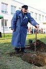 Lidickou hrušeň vysadili ve středu 28.11.2018 na zahradě ZŠ Žerotínova ve Valašském Meziříčí. Aktu se zúčastnil potomek přeživší lidické ženy Antonín Nešpor.