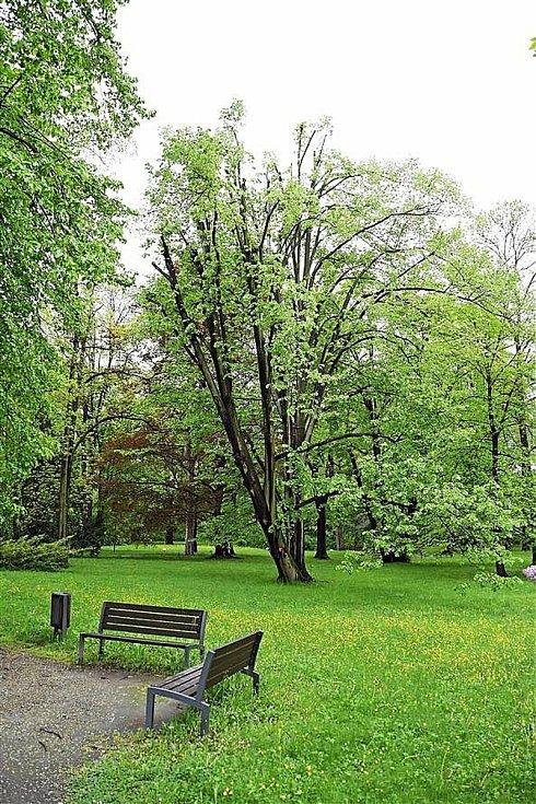 Park u zámku Kinských ve Valašském Meziříčí prošel rozsáhlou obnovou; květen 2021