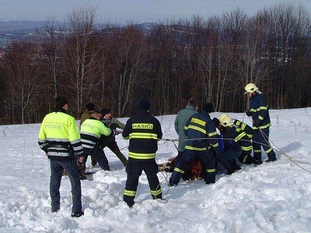 Pomoc hasičů při záchraně koně u Velké Lhoty
