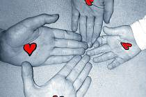 Vsetínská nemocnice vyhlásila dobročinnou sbírku, kterou chce pomoci zdravotní sestře Martině Bučkové. Ta zůstala po prosincovém tragickém úmrtí manžela sama se čtyřmi malými dětmi.