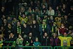 Vsetín (v zeleném) proti přerovským Zubrům - 4. finálový zápas