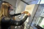 Kromě historických interiérů čeká návštěvníky Zámku Lešná také výstava historických mincí, bankovek a jiných platidel. (Na snímku upravuje expozici muzejní lektorka Kristýna Pončíková)