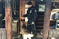 Policisté se psy kontrolují rekreační chalupy v chatové oblasti v Jarcové na Vsetínsku.