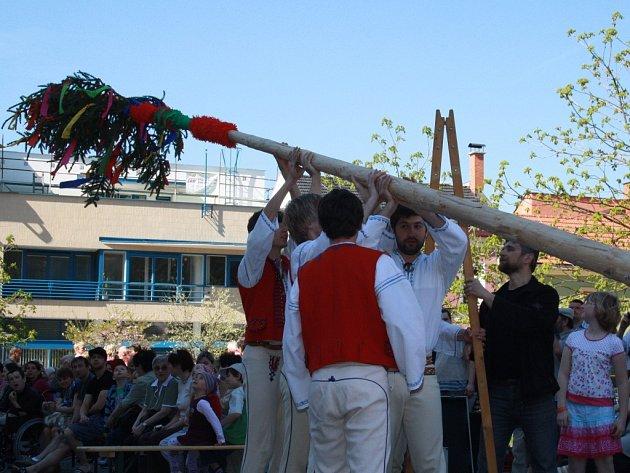 Vsetíňané postavili v sobotu před Masarykovou veřejnou knihovnou májku
