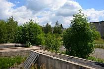 Nevyužitý areál bývalé Křižanovy pily ve Valašském Meziříčí v roce 2017.