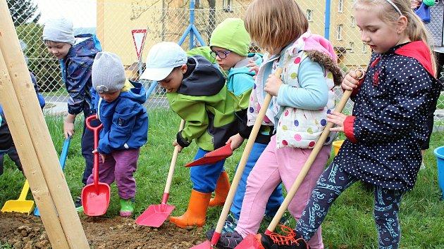 Děti z mateřské školy Kraiczova ve Valašském Meziříčí zasadily lípu