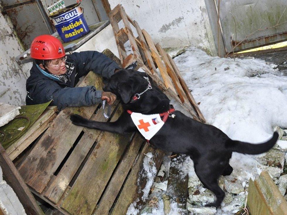 Ve Valašských Příkazech se v sobotu 10. března 2012 sešli majitelé záchranářských psů. Trénovali v rozbořené hale