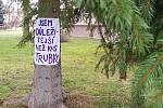 Členové hnutí Extinction Rebellion Vsetín rozmístili na stromy ve vsetínské městské části Rybníky vzkazy ilustrující jejich nesouhlas s požadovaným kácením dřevin; únor 2020