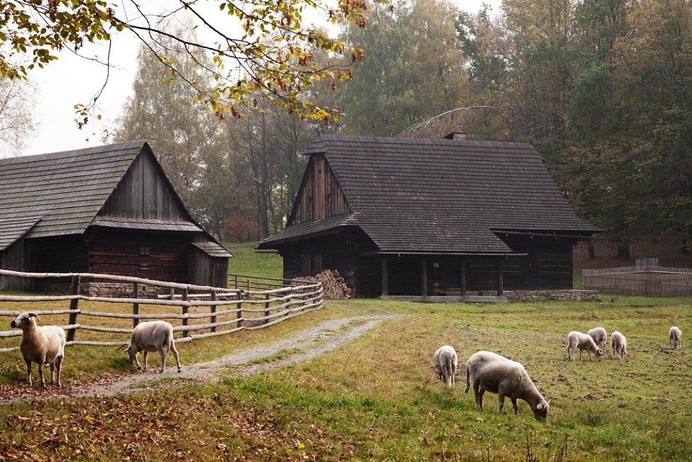 Valašské muzeum v přírodě v Rožnově pod Radhoštěm - Valašská dědina, Šturalova usedlost.