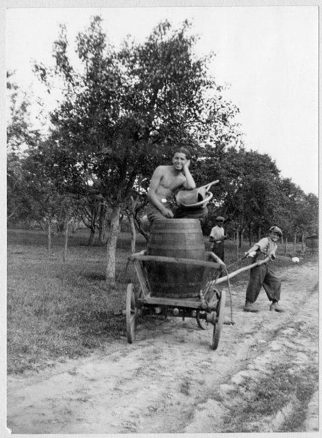 Děti při sběru ovoce na kvas. Valašsko, 1.polovina 20.století
