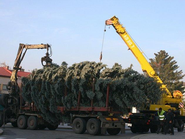 Přeprava vánočního stromu na Masarykovo náměstí v Rožnově pod Radhoštěm, Rožnov p. R., 14. listopadu 2012
