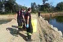 Ryby v řece Bečvě zabil kyanid