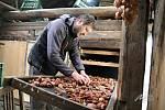 Manželé Lukáš a Ivana Spitzerovi z Muzea regionu Valašsko pro tradiční způsob sušení ovoce. Nyní vedou projekt zaměřený na záchranu starých valašských sušíren.