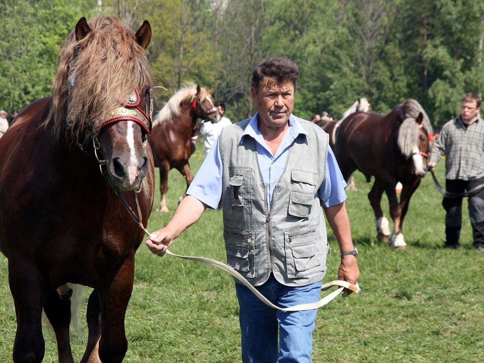 Součástí 14. ročníku Výstavy koní na Valašsku byly i závody vozatajů a kombinovaný závod chladnokrevníků v rámci kvalifikace na mistrovství České republiky.