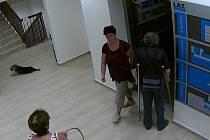 Nezmáný zloděj krade zákaznicím kadeřnických a kosmetických salónů peněženky z kabelek.