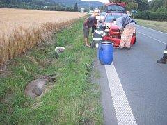 Dva divočáci při přebíhání silnice poškodili osobní auto. Srážku nepřežili.