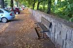 Na Dukelské ulici ve Vsetíně zůstává po bezdomovcích nepořádek. Lidé jej označují za hrozný a situaci za zoufalou.