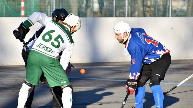 1. liga hokejbalu Malenovice - Plzeň Litice