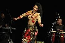 V zámku Žerotínu ve Valašském Meziříčí se v pátek 6. listopadu 2015 uskutečnil benefiční koncert pro místní hospic Citadela. Zazněly romské melodie sourozenců Kačových, tančila skupina Cikne čhave. Součástí bylo i zahájení výstavy Jindřicha Štreita.