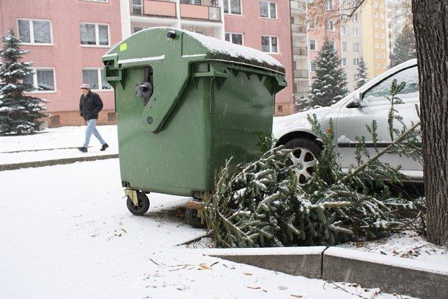 Lidé na Valašsku začínají po Vánocích vyhazovat stromečky.